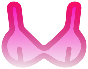Bra PNG Pic PNG icons