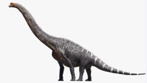 Brachiosaurus Transparent Background PNG Clip art