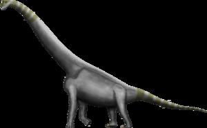 Brachiosaurus Transparent PNG PNG Clip art