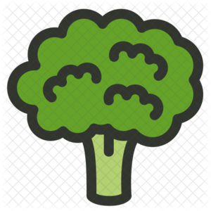 Broccoli PNG Download Image PNG Clip art