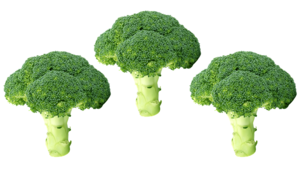 Broccoli PNG Free Image PNG Clip art