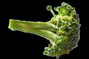 Broccoli PNG Image HD PNG image