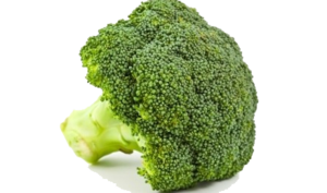 Broccoli PNG Transparent Background PNG Clip art