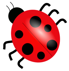 Bugs Transparent PNG PNG Clip art
