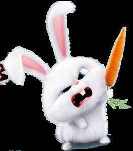 Bunny PNG Photos PNG Clip art