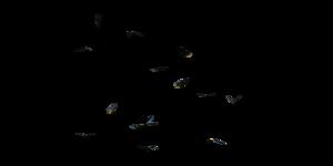 Butterflies Swarm PNG Clipart PNG Clip art
