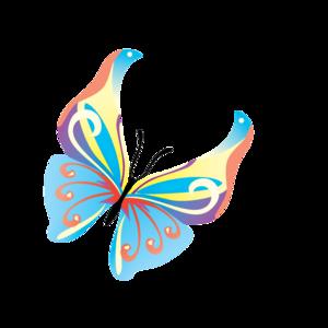 Butterflies Vector Transparent Background PNG Clip art