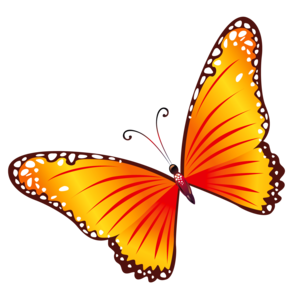 Butterfly Clipart PNG PNG Clip art