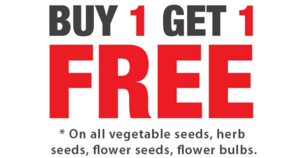 Buy 1 Get 1 Free PNG Background Image PNG Clip art