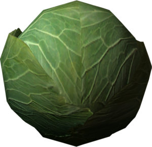 Cabbage With Transparent Background PNG PNG Clip art