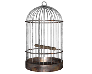 Cage PNG Photos PNG Clip art