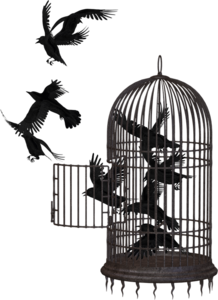 Cage PNG Picture PNG icon