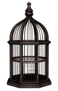 Cage PNG Transparent HD Photo PNG Clip art
