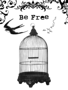 Caged Bird PNG Photo PNG Clip art