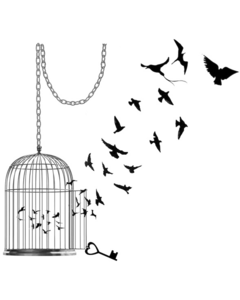 Caged Bird PNG Pic PNG icon
