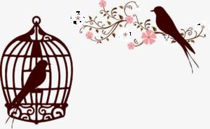 Caged Bird PNG Transparent Image PNG Clip art