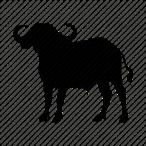Cape Buffalo PNG Transparent Image PNG Clip art