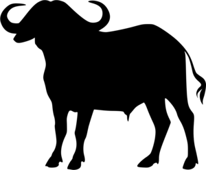 Cape Buffalo Transparent PNG PNG Clip art