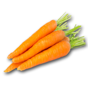 Carrot PNG Pic PNG Clip art