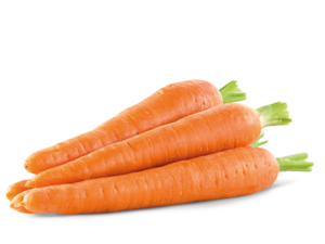 Carrot Transparent Background PNG Clip art