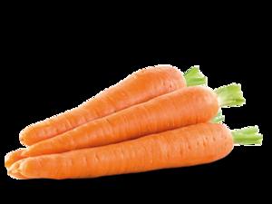 Carrot Transparent Background PNG Clip art