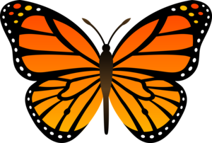 Cartoon Butterfly PNG Clip art
