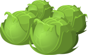 Cartoon Cabbage Food PNG PNG images