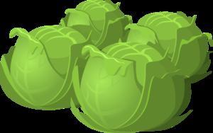 Cartoon Cabbage Food PNG PNG Clip art