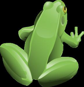 Cartoon Frog PNG PNG Clip art