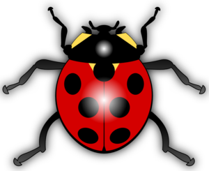 Cartoon Ladybug Clip Art PNG PNG Clip art