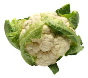 Cauliflower PNG File Download Free PNG Clip art