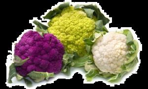 Cauliflower PNG HD Photo PNG Clip art