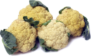 Cauliflower PNG Image Free Download PNG Clip art