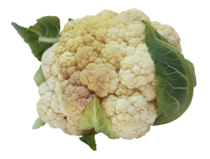 Cauliflower PNG Image PNG Clip art