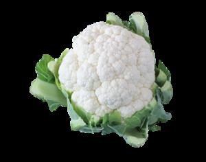 cauliflower PNG Clip art