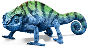 Chameleon PNG Transparent Image PNG Clip art