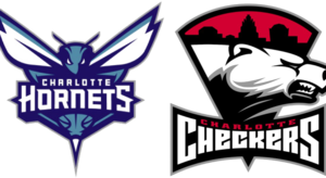 Charlotte Hornets PNG HD PNG Clip art