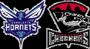 Charlotte Hornets PNG HD PNG Clip art