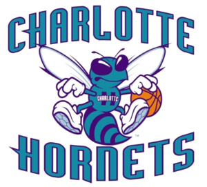 Charlotte Hornets PNG Transparent Image PNG icon