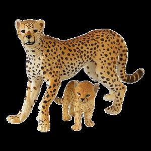 Cheetah PNG Free Download PNG Clip art