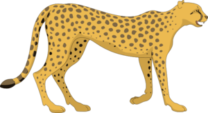 Cheetah PNG Photos PNG Clip art