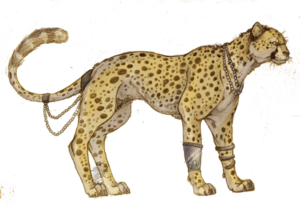 Cheetah PNG Picture PNG icon