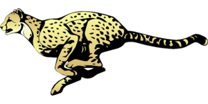 Cheetah Transparent PNG PNG Clip art