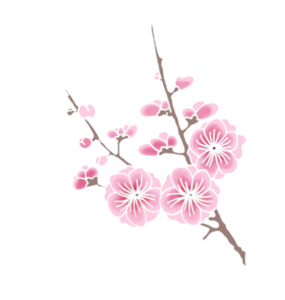 Cherry Blossom PNG Clipart PNG Clip art