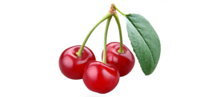Cherry Fruit PNG HD PNG Clip art