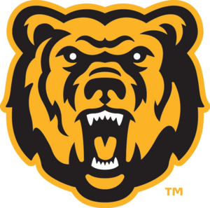 Chicago Bears PNG Transparent Background PNG Clip art