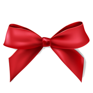 Christmas Bow PNG Photos PNG clipart