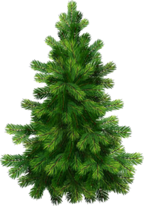 Christmas Nature PNG Image PNG Clip art