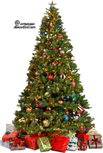 Christmas Tree PNG Photo PNG Clip art