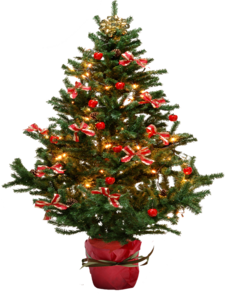 Christmas Tree PNG Pic PNG Clip art